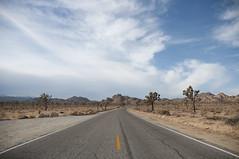2240 miles (joanna.kf) Tags: california road sky usa mountains nature america nikon desert horizon joshuatree roadtrip hills ontheroad joshuatreenationalpark nikond90
