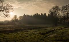 Ausblick (Chris Buhr) Tags: winter sunrise germany weihnachten landscape deutschland nikon f14 saxony feld mm lower nikkor landschaft 58mm sonnenaufgang heide idylle d800 niedersachsen lneburger slze