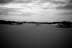 In the sand (Tiph Haine) Tags: bw white black france beach canon french landscape wb franais 1022 lightroom canon1022 canonlens 40d canon40d canonfrance canonpassion