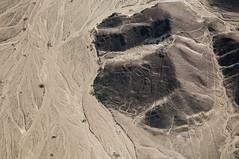 Peru (David Ducoin) Tags: peru southamerica america astronaut line pe ica nazca nazcaline ducoindavid