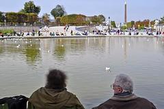 Obelisk and Pool (AntyDiluvian) Tags: park trip paris france pool garden pond obelisk tuileries plinth cleopatrasneedle 2015 octagonal frizzy