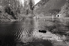 Lake view (Samir D) Tags: blackandwhite bw lake canada water vancouver 35mm canon landscape eos blackwhite bc britishcolumbia trails northamerica 5d westcoast 2016 markiii bunztenlake 35mm14 samird
