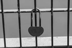 locked love (JBsLightAndShadow) Tags: blackandwhite love monochrome nikon heart lock heidelberg schloss herz liebe neckar weir wehr stauwehr schwarzweis vorhngeschloss wieblingen schwarzundweis d3300
