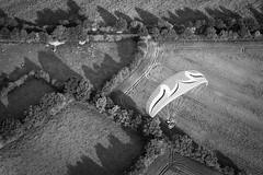 Paramoteur (Les pieds dans le vide) Tags: france sport noiretblanc champs aerialview paysage fr ulm casson paysdelaloire paramoteur survol vuearienne