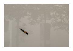 Le poignard (hlne chantemerle) Tags: shadow panorama art monochrome grey gris expo galerie ombre reflet dagger extrieur vue sculptures paysages oeuvre vitrine urbain portes photosderue poignard