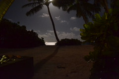 Amari Havodda Resort Maldives (Simon_sees) Tags: travel vacation holiday island wanderlust tropical maldives luxury