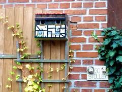 2014-10-20 Kremmen 12 (dks-spezial) Tags: brandenburg oberhavel scheunenviertel kremmen