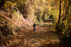 happy  kid with his bike (paologmb) Tags: leica autumn trees sunset orange mountain fall leaves bike landscape fun happy schweiz switzerland kid play path swiss hahahaha 50 cransmontana noctilux095 paologamba