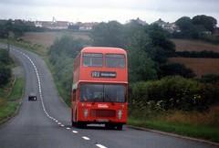 South Wales July 1986 Neyland (togetherthroughlife) Tags: bus southwales wales july 1986 neyland wth945t
