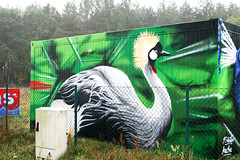 WAS - Workshop Storkow (AgeAge) Tags: green rain birds fog kids illustration fun graffiti was design colours crane wiese peacock funky container workshop cans grn vgel der auf development wallpainting stork storch spraycans pfau gestaltung kranich storkow walldesign sprhdosen ageage mschfer