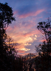 1/4/15 Sunset (Karol A Olson) Tags: sunset sky colors beautiful clouds jan15 project3652015 mdpd2015 115picturesin2015 48abackdropofsky