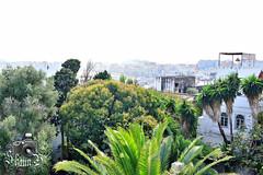 Tangier (ShaunMYeo) Tags: morocco maroc marruecos tangier marokko tanger marrocos fas marokas marokk maroko