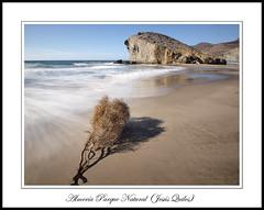 Playa de Monsul, San Jose, Parque Natural Cabo de Gata - Nijar, Almeria, Spain (Jequiles) Tags: sanjose playa almeria cala peineta monsul playademonsul monsulsanjose