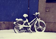 Covered (C_MC_FL) Tags: vienna wien street schnee winter snow cold bike bicycle photography austria sterreich fotografie rad covered fujifilm kalt fahrrad x10 bedeckt strase