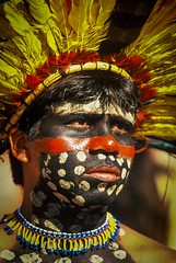 Bororo (guiraud_serge) Tags: brazil portrait brasil amazon indian tribe ethnic indien matogrosso indio labret brsil tribu amazonie amazone forttropicale ethnie kayapo kuikuro metuktire plateaulabial hautxingu parcduxingu sergeguiraud artducorps ornementcorporel