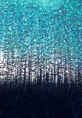 Shattered. (Net_Ski) Tags: blue urban broken window glass canon gloucestershire 365 shattered cheltenham netski 700d efs1855mmf3556isstm eos700d