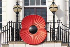 Big Reminder (Bluden1) Tags: soldier warrington war poppy rememberance soldiers remembrance