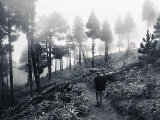 Spooky Hiking