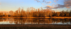 Lower River Road Pano (Team Hymas) Tags: sunset vancouver washington lowerriverroad