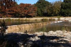 IMG_3766 (Dan Maxwell) Tags: statepark autumn trees lake fall water pool leaves rio river stream texas dam tx foliage frio garnerstatepark baldcypress