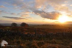 Sunset (Vicktrr) Tags: autumn sunset red orange mountain stone wall gold scotland woods fife dusk heather hill scottish hills burnt bracken lomond falkland