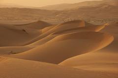 Sandy sunset (berik) Tags: sunset sand desert dunes uae middleeast abudhabi arabia unitedarabemirates emptyquarter rubalkhali