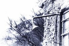 _MG_2803 (andreatomaselli1) Tags: sea sky italy seascape verde nature colors clouds canon landscape eos rocks long exposure paradise blu bad story tomorrow 70 rosso 18200 calabria caminia marrone pomeriggio fancier 50d naturee copanello gilter paraidse