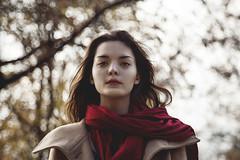 Herbst in Wien (elisabethg.g.) Tags: park autumn scarf buch book herbst shooting leafs bltter bunt schal