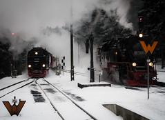die Weichen sind gestellt (grapfapan) Tags: winter snow station germany tracks steam railways harz steamtrain hsb dampflokundbahn