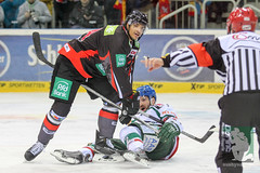 "DEL15 Düsseldorfer EG vs. Augsburg Panthers 28.12.2014 044.jpg • <a style=""font-size:0.8em;"" href=""http://www.flickr.com/photos/64442770@N03/16008658698/"" target=""_blank"">View on Flickr</a>"