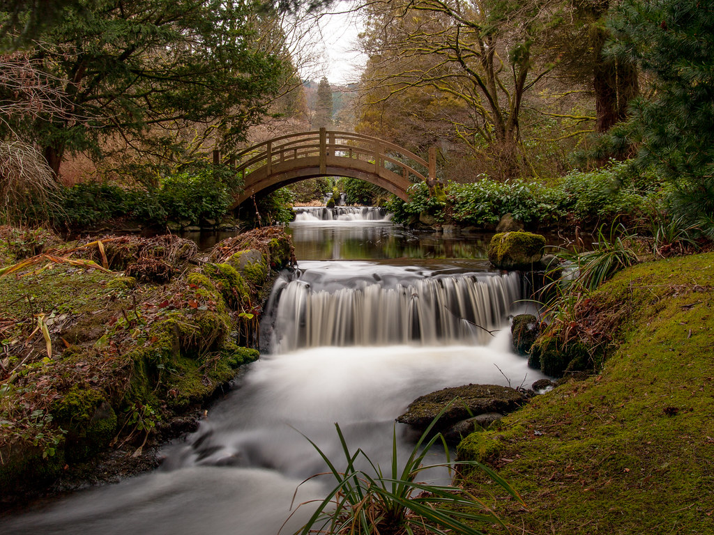 The world 39 s best photos by graham maxwell flickr hive mind for Stobo water gardens