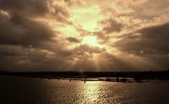 Tegenlicht (wilma HW61) Tags: sky nature water clouds río river wasser heaven nederland natuur himmel wolken rivière ciel cielo lucht paysbas ijssel veluwe overijssel overstroming niederlande tegenlicht zonlicht uiterwaarden gelderland jacobsladder rivier hattem donkerewolken watermeadows zonnestralen golddragon wolkenspel nikond90 ultimateshot waterspiegeling zonneglinstering wilmahw61 wilmawesterhoud
