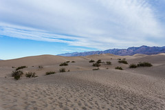 Death Valley Trip - Nov 2014 - 118 (www.bazpics.com) Tags: california park ca trip november winter usa tree america point death us sand unitedstates desert joshua weekend dunes saturday visit national mesquite crater valley deathvalley zabriskie ubehebe 2014 theraceway barryoneilphotography