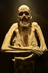 Mummy - Guanajuato (Thomas Roland) Tags: las museum de museo mummy momias mumie