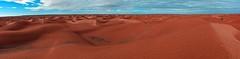 Ksar Ghilane oasis (JohntheFinn) Tags: africa sahara desert tunisia oasis berber arab maghreb reg tunisian afrikka autiomaa keidas tunisialainen
