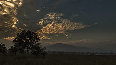 Sanctuary (bhodaporel) Tags: travel sky india clouds landscape evening hills assam sanctuary