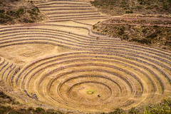Peru (David Ducoin) Tags: peru southamerica inca cuzco america cusco traditional agriculture pe sacredvalley moray archeological ducoindavid