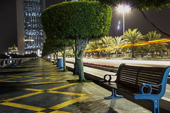 IMG_7303 (Ali Sabbagh) Tags: street tree colors night canon uae abudhabi beams eos7d