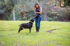 DSC_4210 (lauripiper) Tags: california park portrait woman dog girl mutt rottweiler pitbull amstaff americanstaffordshireterrier nikond810