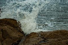DSC00923 (Emily Hanley Photography) Tags: sea water wales rocks waves crash sony stormy spray splash rockpools fastshutterspeed porthdinllaen