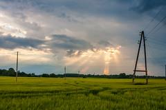 _MG_6041-HDR (i0wa) Tags: sunset summer nature rain estonia canon2470f28l harju canoneos40d canonspeedlite580exii peningi