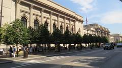 Trees of the Metropolitan Museum of Art: New York, New York 2016 (DeepRoot Green Infrastructure) Tags: cell soil metropolitanmuseumofart urbanforestry streettrees urbantree silvacell suspendedpavement