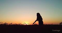 Silueta en un campo de trigo una tarde de verano (Lumiago) Tags: silueta