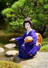 -3 (nobuflickr) Tags: japan kyoto maiko geiko       fukuteru miyagawachou  20160718dsc04538