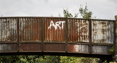 But Is It Art?? (IFM Photographic) Tags: img9198a canon 600d sigma70200mmf28exdgoshsm sigma70200mm sigma 70200mm f28 ex dg os hsm bedfordshire beds bedford priorycountrypark priorypark sandy railwayline bedfordsandy bridge grafitti