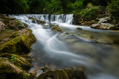 Follow the river (PierrePelli) Tags: waterfall water river green forest summer white black rocks moss tree trees canon 6d snake wave