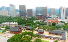 Seoul from the sky (Seoul, Korea) (joe nes) Tags: old mountain tree green modern skyscraper asia traditional hill towers palace korea seoul