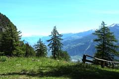 Randonne (bulbocode909) Tags: nature suisse vert bleu arbres printemps valais fully montagnes randonne pturages
