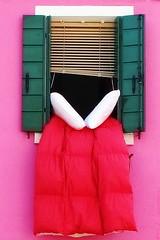 3167 (EricS2010) Tags: window rose rouge vert deux lit venise venezia fentre blanc italie oreillers burano couette oreiller volet crpi