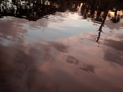 Evening on Alligator Creek (ashabot) Tags: